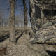 3 Must Haves To bow Hunt Turkeys