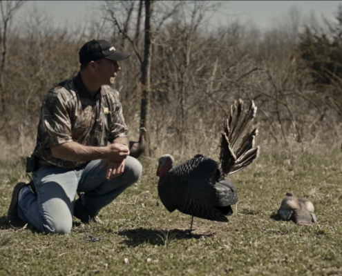 Best Turkey Setup Decoys for Successful Bow Hunting