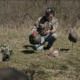 Simulating Real Movement With Your Turkey Decoys